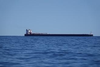 whitefish boat